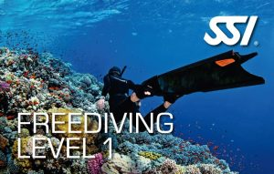 472514_Freediving Level 1 (Small)