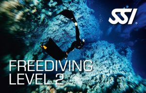 472515_Freediving Level 2 (Small)