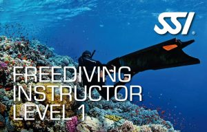 472581_Freediving Instructor Level 1 (Small)