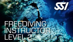 472582_Freediving Instructor Level 2 (Small)